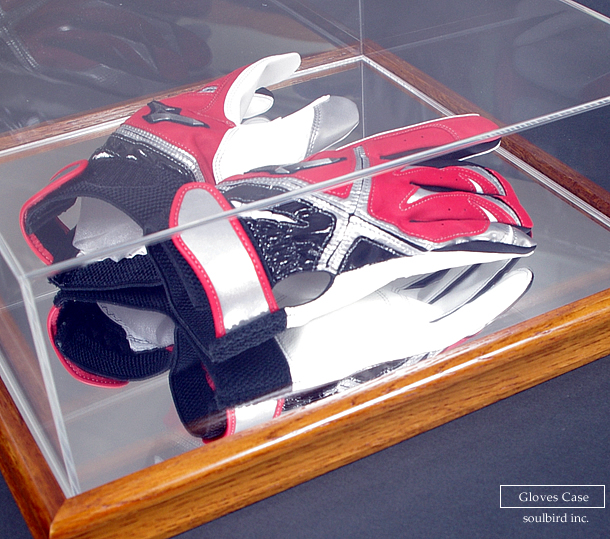 gloves-collection-case