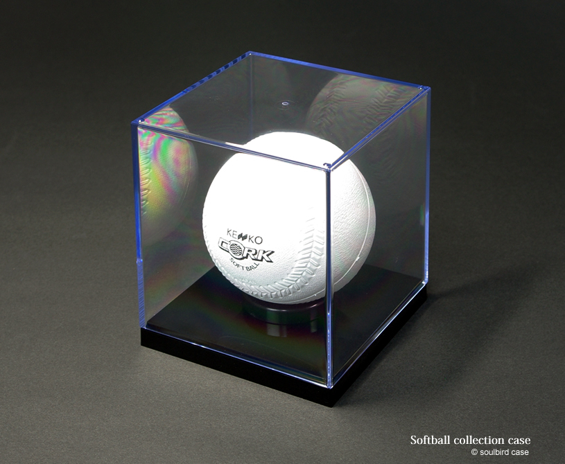 softballcase
